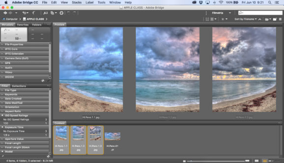 How To : Create a Polyptych from a Single Image