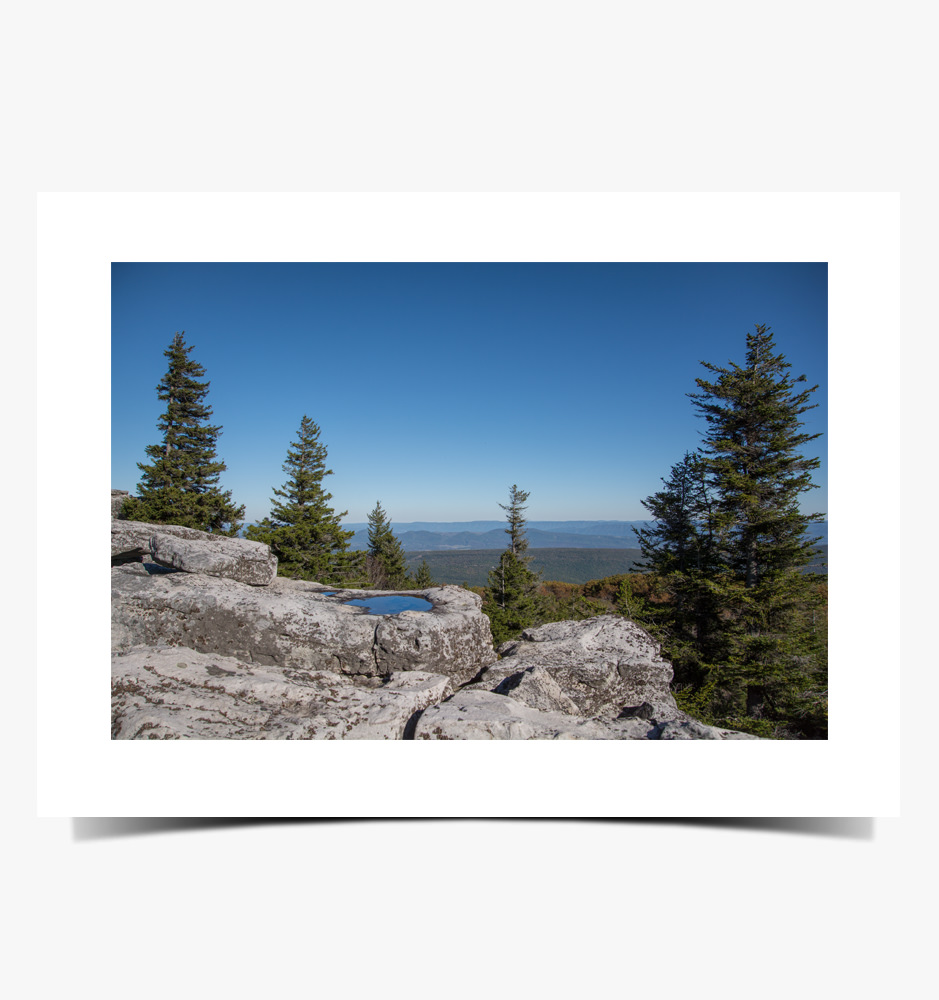 Print 1082 - Clear Sky, Dolly Sods