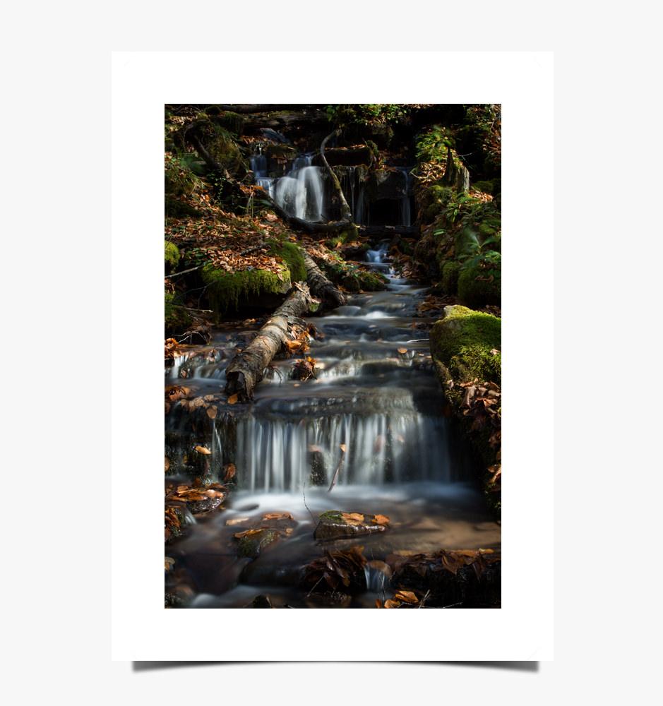 Print 1084 - Seneca Creek