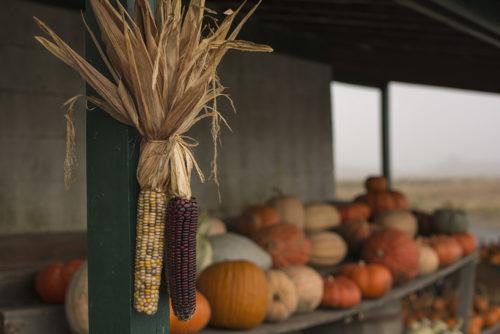 White Farm Barn Market - WV