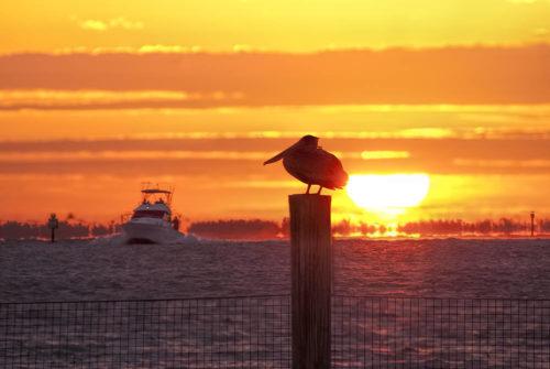 Captiva Island Sunrise