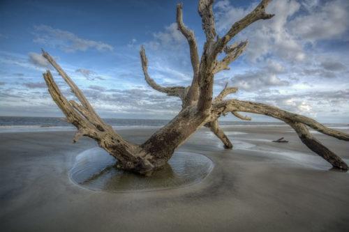 Jekyll Island - GA