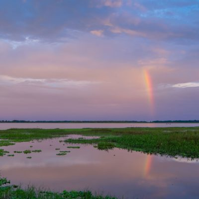 Kissimmee Lakefront Sunset Rainbow – Nikon D500 & Tamron 15-30 G2